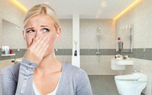 Cách khử mùi khai nước tiểu trong phòng hiệu quả nhanh chóng