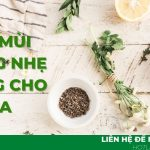 Tạo mùi hương nhẹ nhàng cho Spa LBEKO – giải pháp chinh phục mọi khách hàng