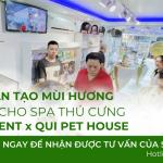 Dự án tạo mùi khu spa thú cưng QIN pet house