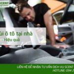 Khử mùi ô tô tại nhà đơn giản không phải ai cũng biết !!!