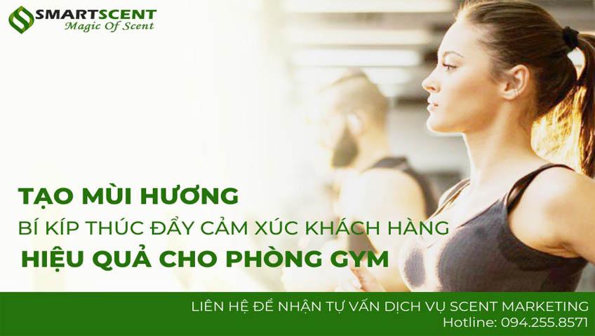 tạo mùi hương cho phòng gym
