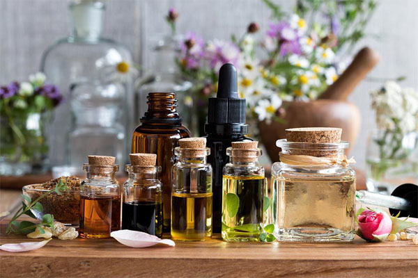 Nguồn gốc của tinh dầu hương hoa Viva La Vida