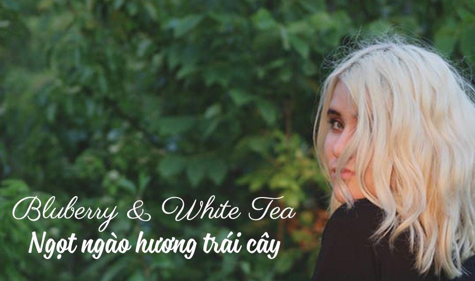 Tinh dầu blueberry & White Tea