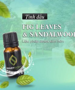 Tinh dầu Fig Leaves - Sandalwood