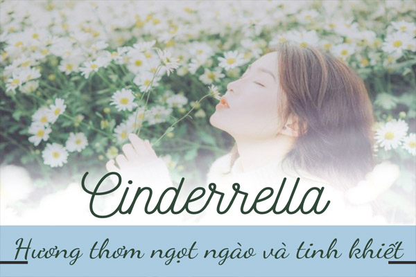 Tinh dầu Cinderrella