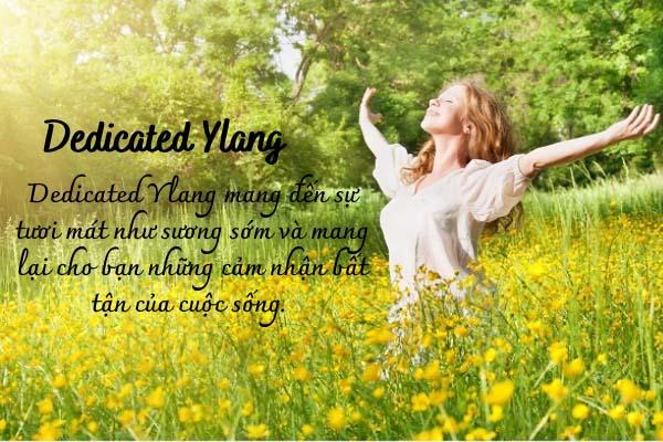 Tinh dầu Dedicated Ylang
