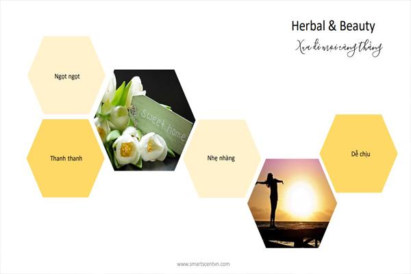 Tinh dầu herbal & beauty